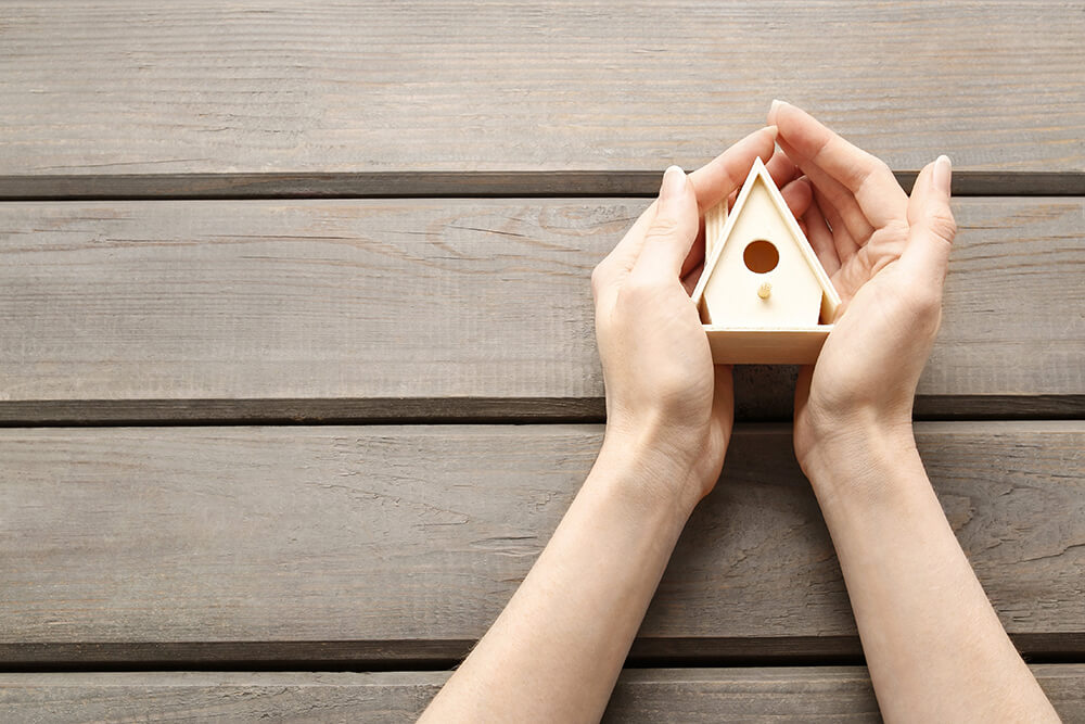 Hands holding bird house (1)
